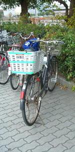 大阪城ホール北玄関に通ずる階段口近くの植え込みに停めた私の自転車《071201撮影》