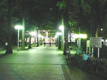 街灯に照らし出された、夜のザ・シンフォニーホールへと続くプロムナード《081112撮影》