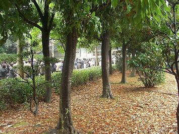 公園側玄関前にできていた、開場を待つ聴衆たちの長蛇の列。主催者・中国放送による追加PR放送の成果か《081221撮影》