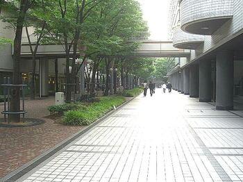 いずみホールから西に延びる通路。左横に見えるのはプロムナードで、両側の所々にベンチが配されている《090613撮影》