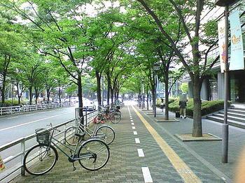 いずみホールに通ずるプロムナードが尽きたところに見える、大阪城ホールと南北に通ずる道路。道沿いには「シアターPRAVA!」や「ツイン21」などがある《090613撮影》