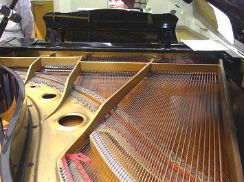 ステージ上に於ける私の立錐位置のほぼ真横に控えるグランドピアノ。ズラッと並んだピアノ弦のその向こうに伴奏者の顔が《091126撮影》